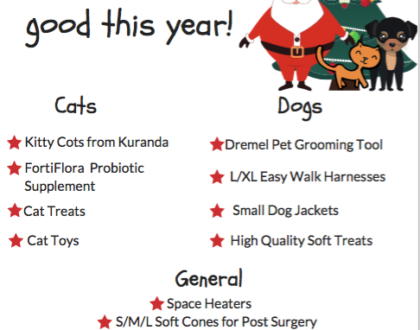 Put Presents Under the Tree for Homeless Pets!