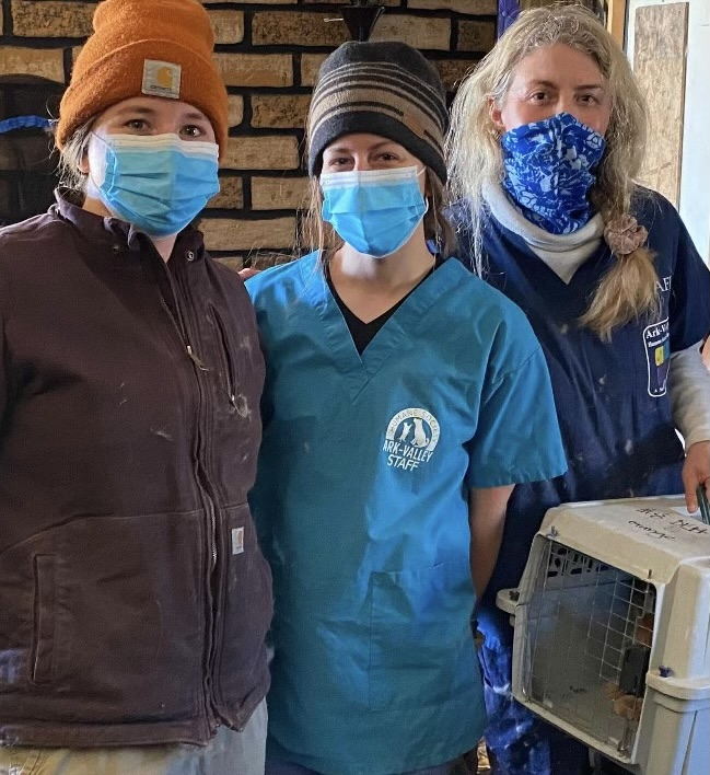 Three women wearing masks and scrubs standing in the home where the cats are